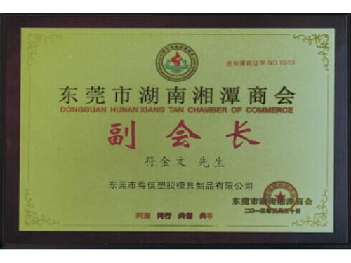 东莞湖南湘潭商会